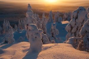Kuva 7: Auringonnousu tykkyjen keskellä Pikku-Syötteellä jää varmasti mieleen.