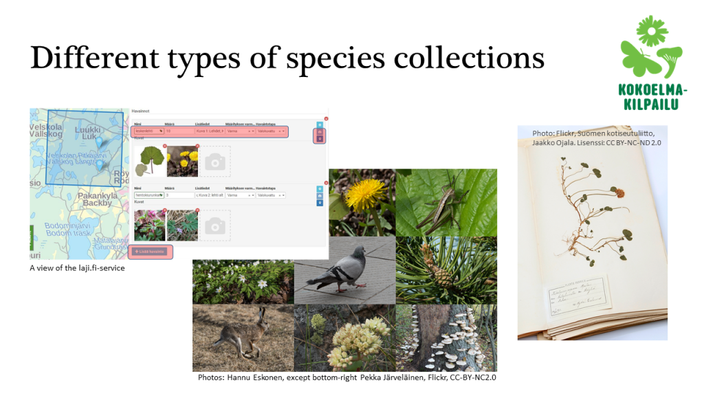 Different types of species collections